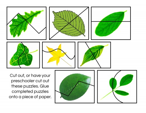 Leaf-Cutting-Puzzles