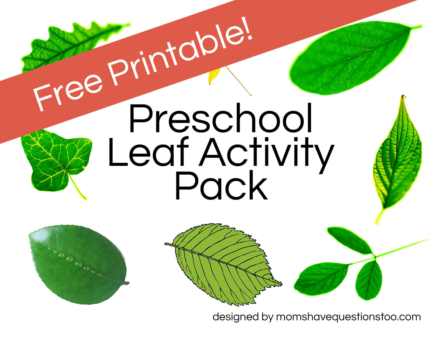 Leaf Activities - Moms Have Questions Too