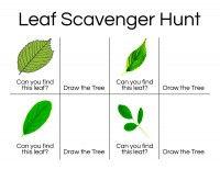 Leaf-Scavenger-Hunt-2