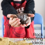 Rock Collection: Fun Summer Activity