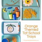 Orange Tot Trays