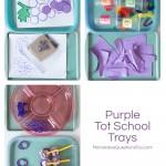 Purple Tot Trays