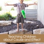 Cause and Effect – Guest Post