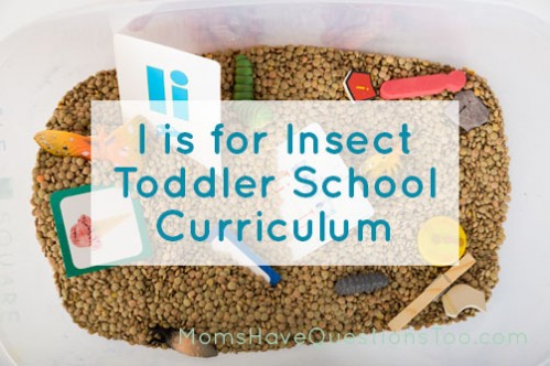 I is for Insect Toddler School Curriculum. Different unit for each letter of the alphabet with lots of learning ideas.