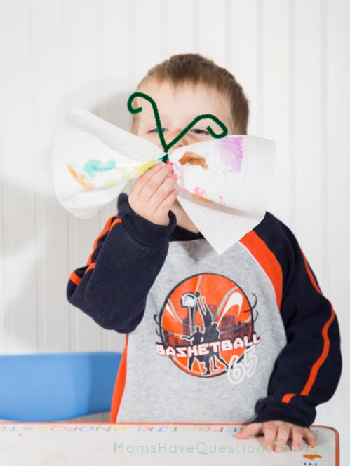 Watercolor Butterfly Activity - Paint a paper towel, then add pipe cleaner to make it a butterfly. I is for Insect unit from an entire toddler curriculum.