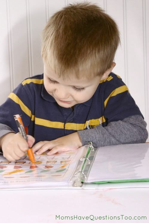 Check out these great toddler activities, printables, and crafts that teach about the letter L and leaves!